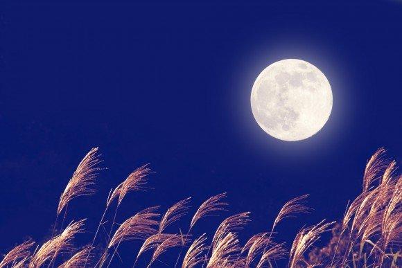 中秋の名月2019年はいつ、由来は?その日に満月は見れるの?