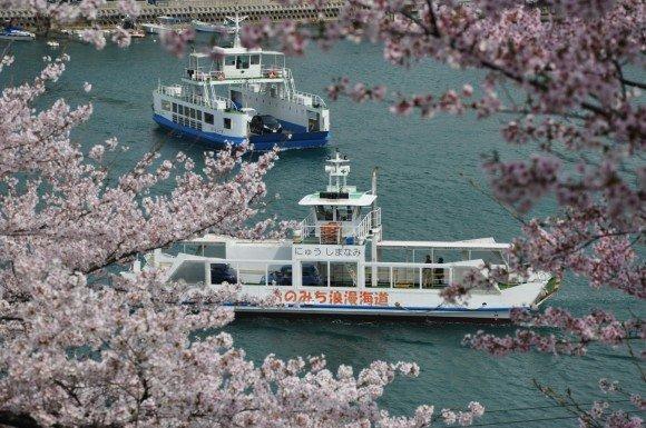 広島の桜・花見の名所や穴場おすすめ10選と開花情報2019!