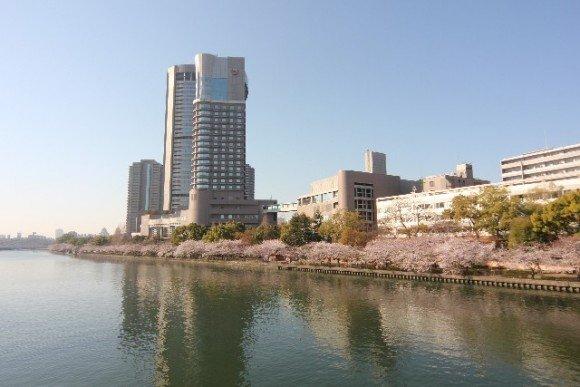 大阪の桜 花見の名所や穴場おすすめ10選と開花情報2020!