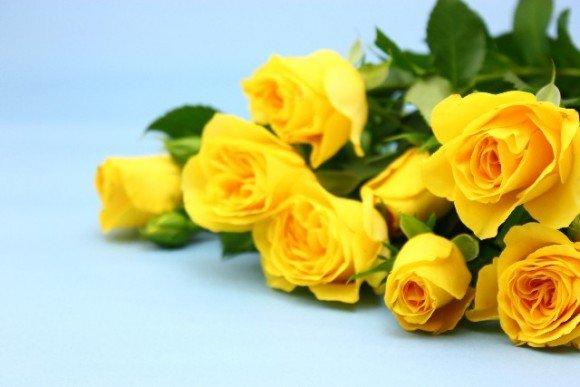 父の日に贈る花の花言葉は何?黄色いバラ以外でもいいの?